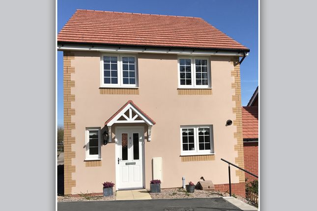 "Thumbnail Detached house for sale in ""The Salisbury"" at Pixie Walk, Ottery St. Mary"