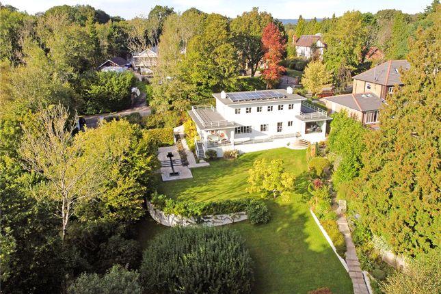Thumbnail Detached house for sale in The Approach, Dormans Park, Surrey