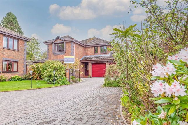 4 bed detached house for sale in Greenhorn's Well Avenue, Falkirk FK1