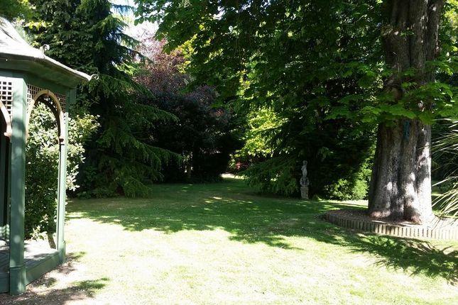 Replacement Garden Photo