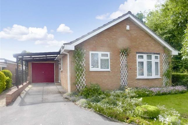 Thumbnail Detached bungalow to rent in Kendal, Toothill, Swindon