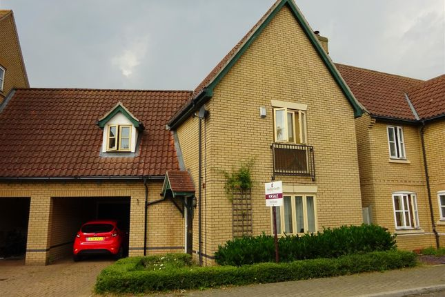 Thumbnail Link-detached house for sale in Havergate Road, Ipswich