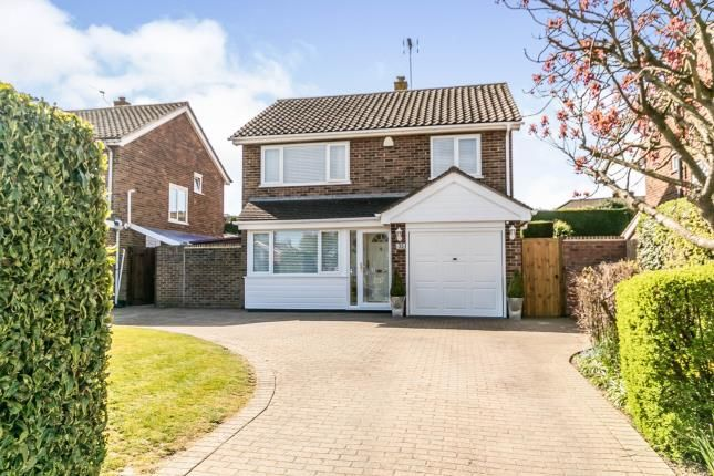 Thumbnail Detached house for sale in Westwood Road, Maidstone, Kent