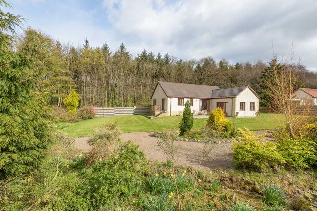 Thumbnail Detached bungalow for sale in Westcraig, Bottomcraig, Balmerino, Newport On Tay