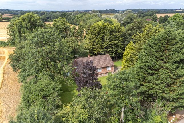 3 bed bungalow for sale in Perry Green, Much Hadham, Hertfordshire SG10