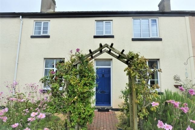Thumbnail Terraced house to rent in Hampton Close, St. Marychurch, Torquay