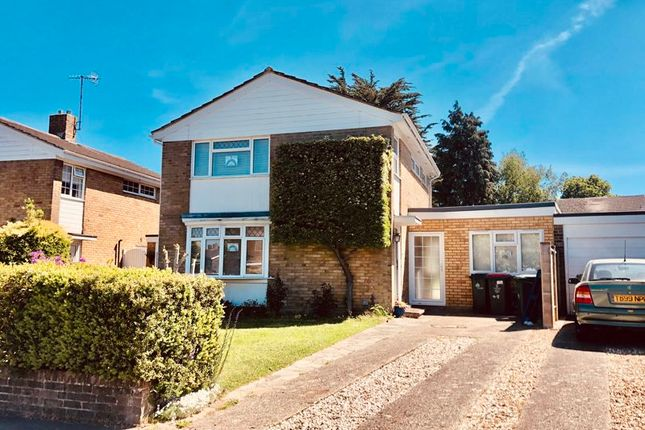 Thumbnail Detached house to rent in Newmarket Road, Crawley