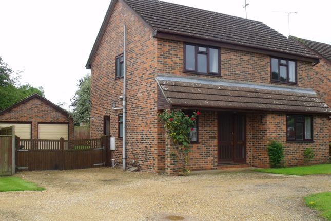 Thumbnail Detached house to rent in Rye Hill Close, Bere Regis
