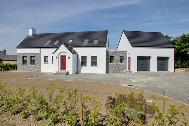 Thumbnail Detached house for sale in Loughdoo Road, Kircubbin
