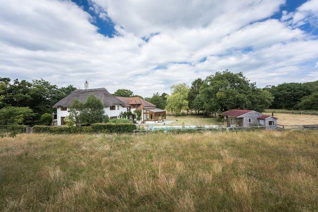 Thumbnail Detached house for sale in Hangersley, Hangersley, Ringwood