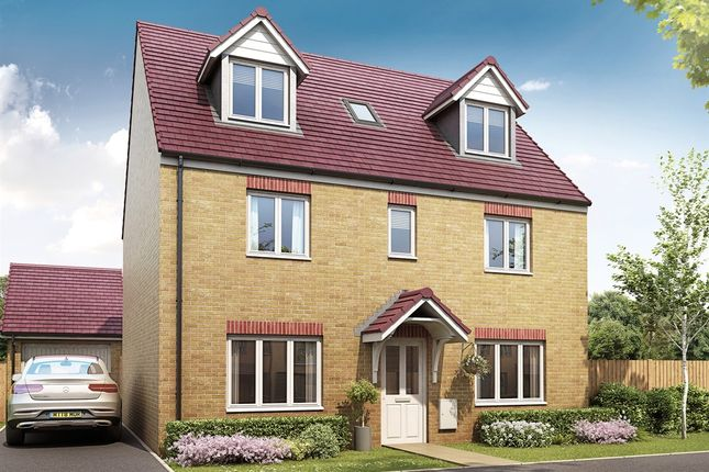 "Thumbnail Detached house for sale in ""The Newton"" at Yeovil Road, Sherborne"