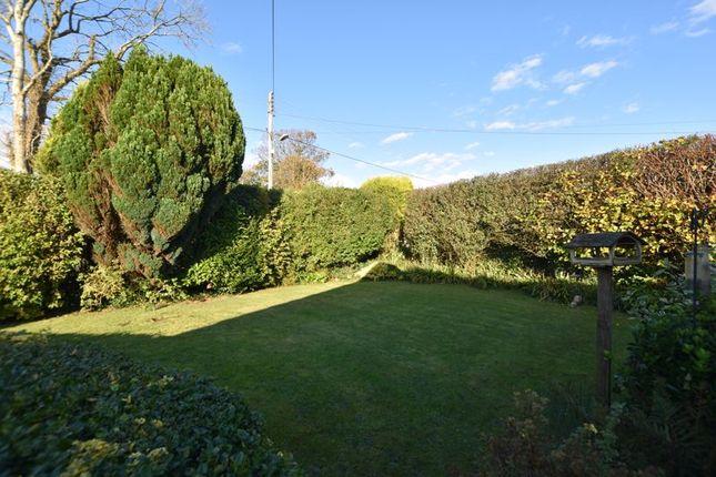 Garden of Trevarren, St. Columb TR9