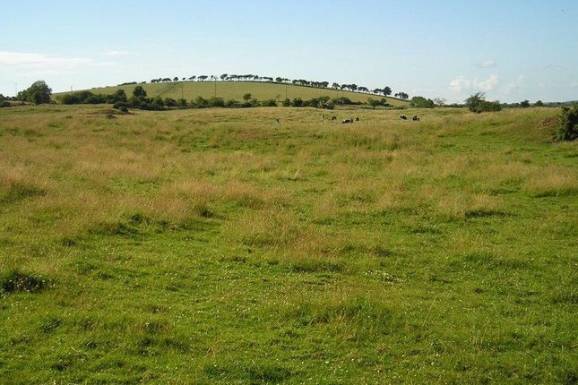 Thumbnail Land for sale in Kirkinner, Newton Stewart