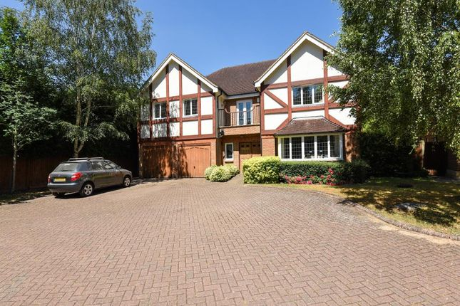 Thumbnail Detached house for sale in Snows Paddock, Windlesham GU20,