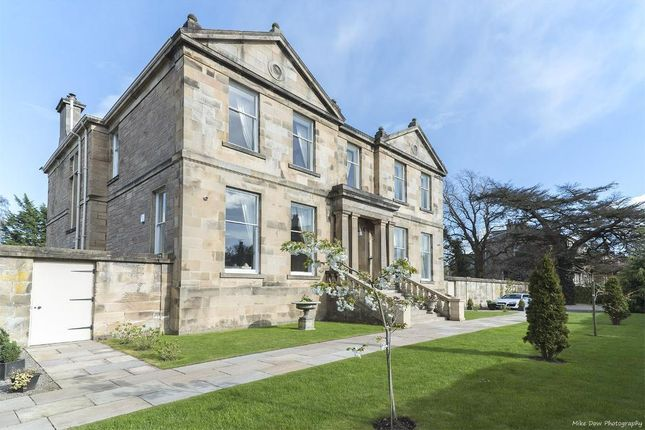 Thumbnail Detached house for sale in Gladstone Place, Kingspark, Stirling, Scotland