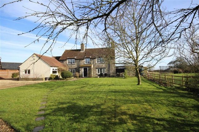 Thumbnail Detached house for sale in Bagbury Lane, Lydiard Millicent