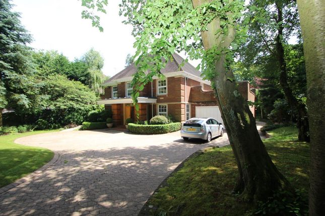 Thumbnail Property to rent in Westfield Road, Beaconsfield