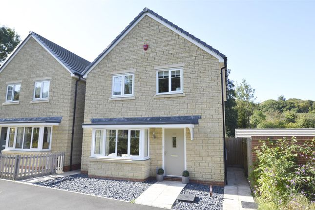 Thumbnail Detached house for sale in Nelson Ward Drive, Radstock