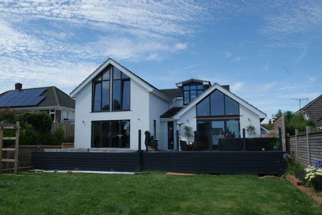 Thumbnail Detached bungalow for sale in David Road, Paignton