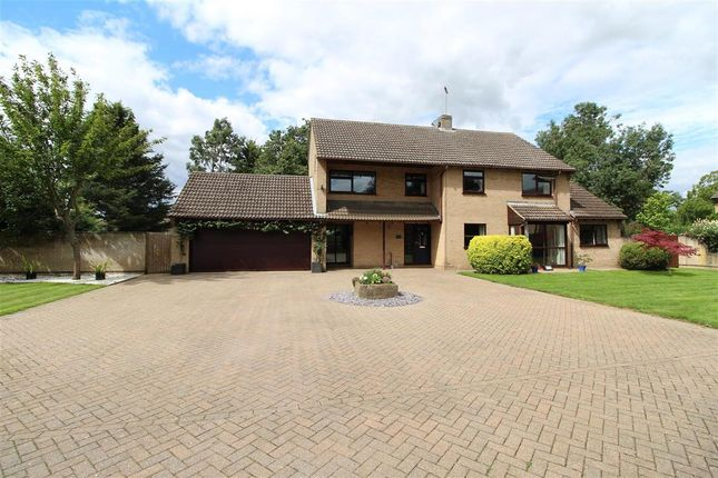 Thumbnail Detached house for sale in Torpel Way, Maxey, Peterborough