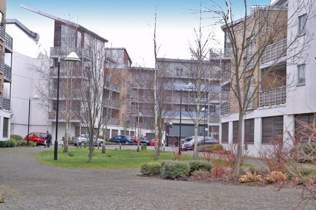 Thumbnail Flat to rent in Kingfisher Meadow, Maidstone