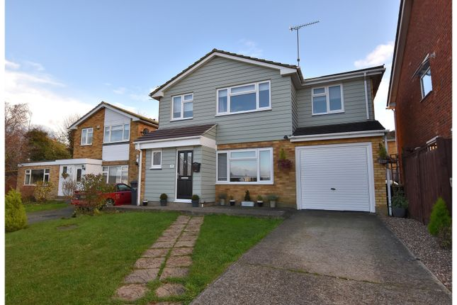 Thumbnail Detached house for sale in Riffhams Drive, Chelmsford