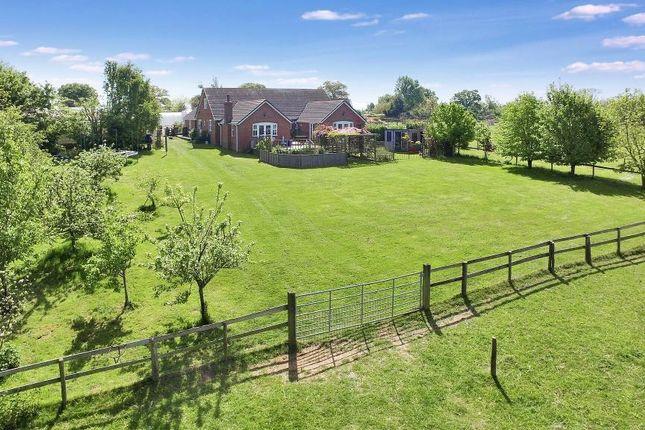 Thumbnail Detached house for sale in Ivy Lane, Great Brickhill, Milton Keynes, Buckinghamshire