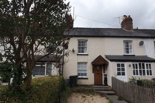 Thumbnail Terraced house to rent in Lion Terrace, Ewyas Harold, Hereford