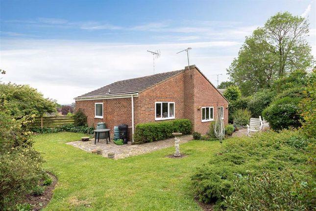 Thumbnail Detached bungalow for sale in Chestnut Rise, Leighton Buzzard