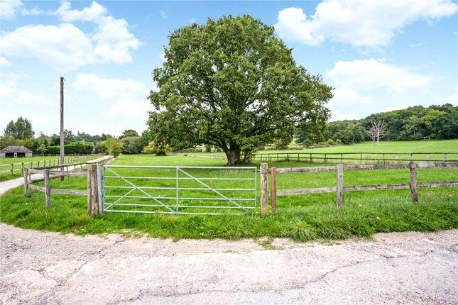 Picture No. 15 of Bushylease Cottages, Redlands Lane, Crondall, Farnham GU10
