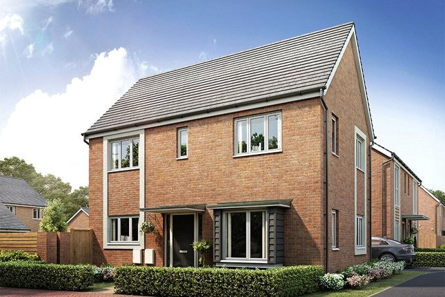 Thumbnail Detached house for sale in Pear Tree Fields, Taylors Lane, South Of Broomhall Way, Worcester