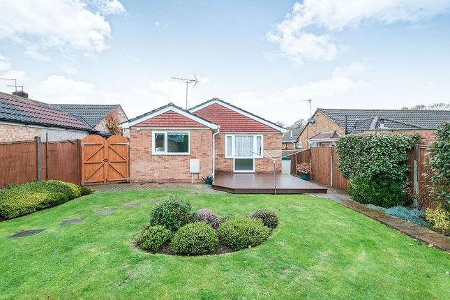 Thumbnail Bungalow to rent in Abbeyfield Drive, Fareham