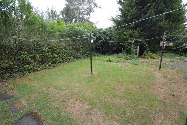 Garden of Alness Street, Hamilton ML3