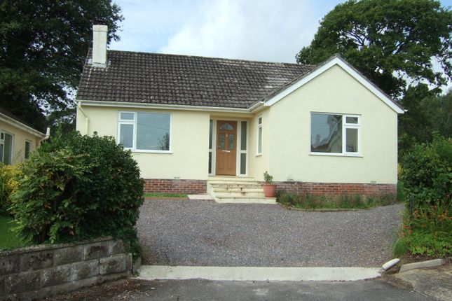 Thumbnail Detached bungalow to rent in Wellmead, Kilmington, Axminster