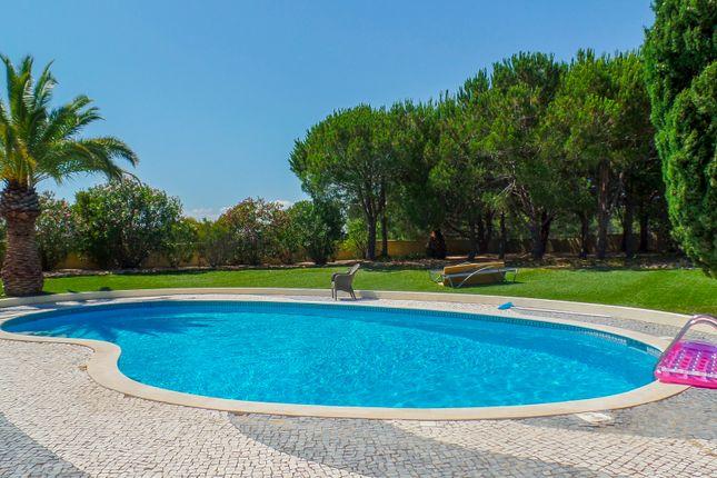 Pool  Garden of Lagoa, Lagoa, Portugal