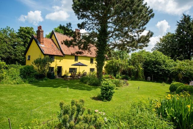 Thumbnail Detached house for sale in Diss Road, South Lopham, Diss, Norfolk