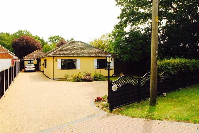 Thumbnail Bungalow for sale in Oakbank, Ardleigh Road, Dedham, Colchester