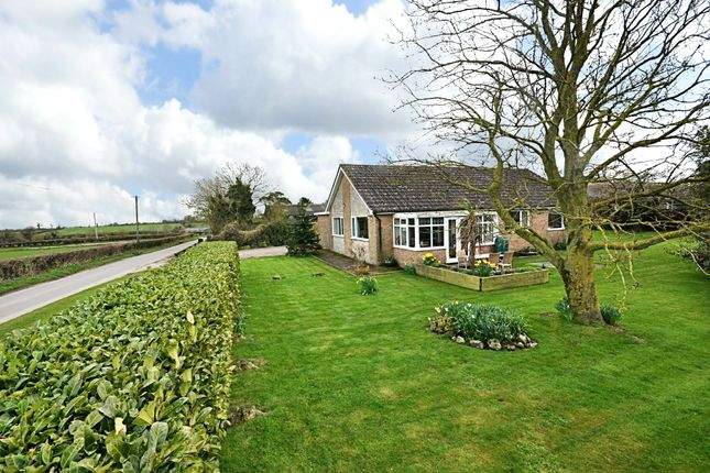 Thumbnail Detached bungalow for sale in Mill Road, Tibenham, Norwich