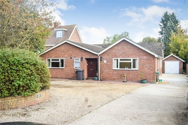Thumbnail Detached bungalow for sale in Beehive Lane, Chelmsford, Essex