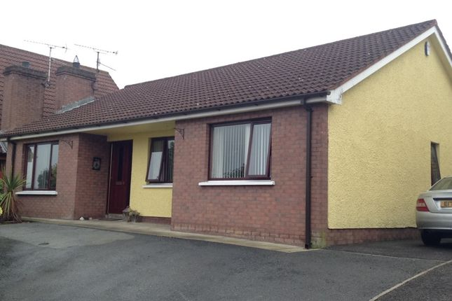 Thumbnail Bungalow to rent in Ardaveen Drive, Newry