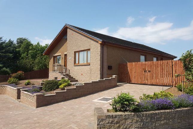 Thumbnail Bungalow for sale in Lanark Road, Carstairs, Lanark