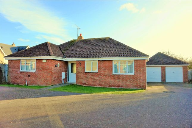 Thumbnail Detached bungalow for sale in Suffolk Avenue, Colchester