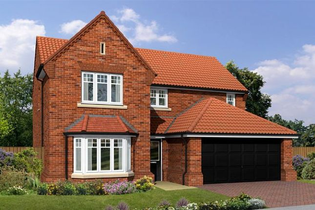 "Thumbnail Detached house for sale in ""The Warkworth"" at Cowick Road, Snaith, Goole"