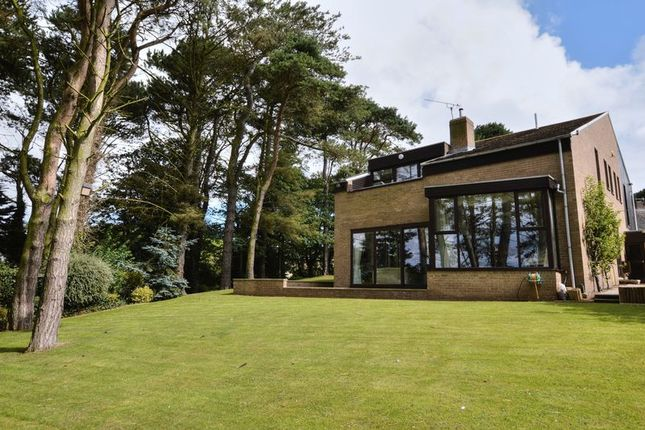Thumbnail Detached house for sale in Alnwood, Alnmouth, Alnwick