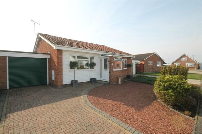 Thumbnail Detached bungalow for sale in Laxton Grove, Great Holland, Frinton-On-Sea
