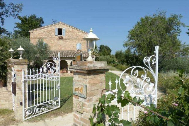 Picture No. 08 of Charming Farmhouse, Belmonte Piceno, Le Marche