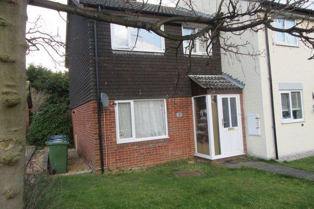 Thumbnail Property to rent in The Paddock, Somersham, Huntingdon