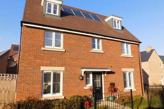 Thumbnail Detached house for sale in Hawthorn Croft, Stotfold, Herts