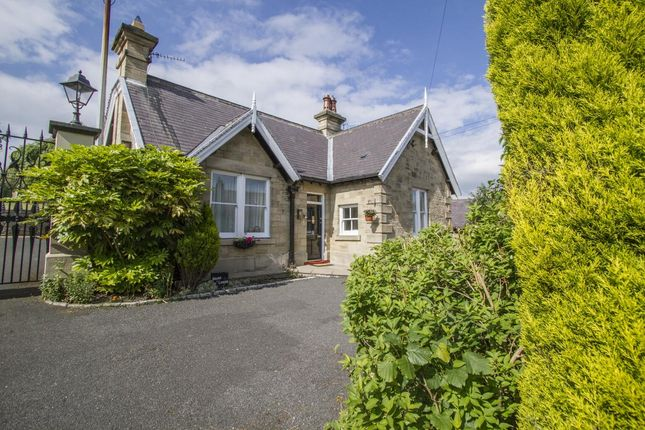 Thumbnail Bungalow for sale in Witton Le Wear, Bishop Auckland
