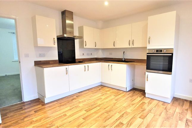 Thumbnail Property to rent in Memorial Close, Broughton, Chester